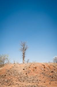 Eroded site, mission 2012. Photo N. Spuhler