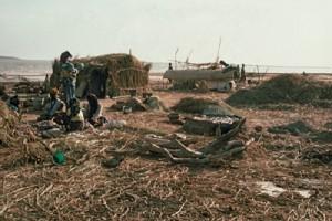 Bozo fishing camp in the Inland Niger Delta. Photo E. Huysecom.