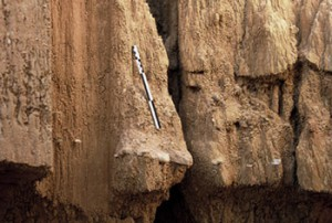 A palaeolithic level appears in a profile at the Ravin des Draperies site. Photo S.Soriano.