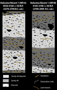 Sedimentary microfacies organization model for the HR1 sequence. CAD L. Lespez