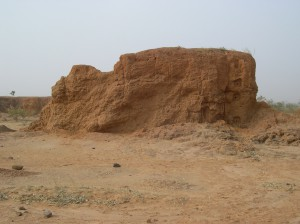 Only rare eolian formations are recognizable in the Ounjougou sector (here at Dandoli). They would evidence arid conditions during the Ogolian, but have not yet been investigated in detail. Photo M. Rasse