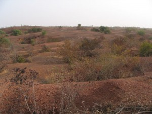 Fig.1. the great mine field at Galli Goni Scholli, in the Dogon plateau laterites. Photo V. Serneels