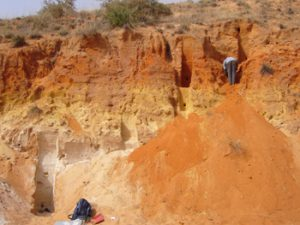Préparation des coupes pour l'échantillonnage dans la vallée de piémont de Yawa. Photo C. Tribolo.