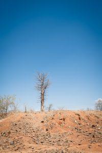 Site archéologique érodé, mission 2012.