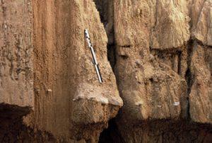 Un niveau paléolithique apparaît dans une coupe du ravin des Draperies. Photo S.Soriano.