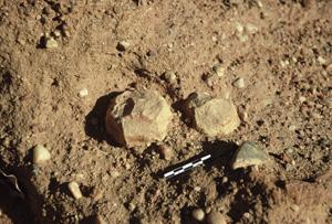 Un polyèdre en grès ; un des plus vieux outils d'Ounjougou. Photo S. Soriano