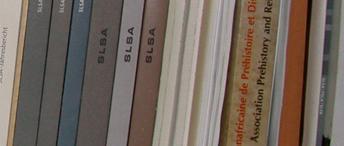 Mémoires de licence, master, thèse et habilitations à diriger des recherches