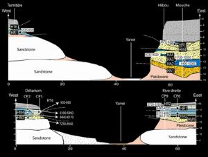 Fig. 3. Coupes synthétiques transversales de la vallée du Yamé. Dessin L.Lespez