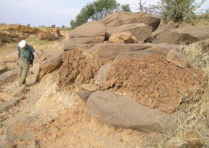 Les plus anciens témoignages de l'évolution géomorphologique du plateau de Bandiagara ont été regroupés sous l'appellation Unité 1. Il s'agit essentiellement de formations alluviales grossières (constituées de galets issus des grès) parfois recouvertes de cuirassements latéritiques et souvent mal conservées. Photo M. Rasse
